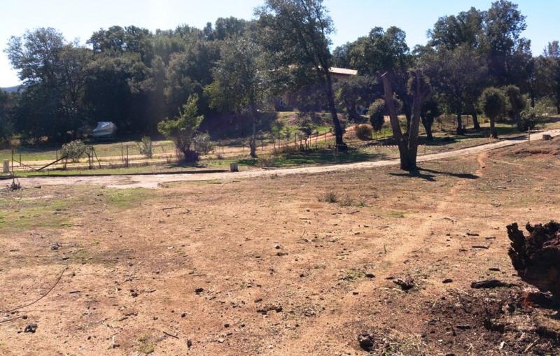 Vente terrain Eccica-suarella 130000€ - Photo 4
