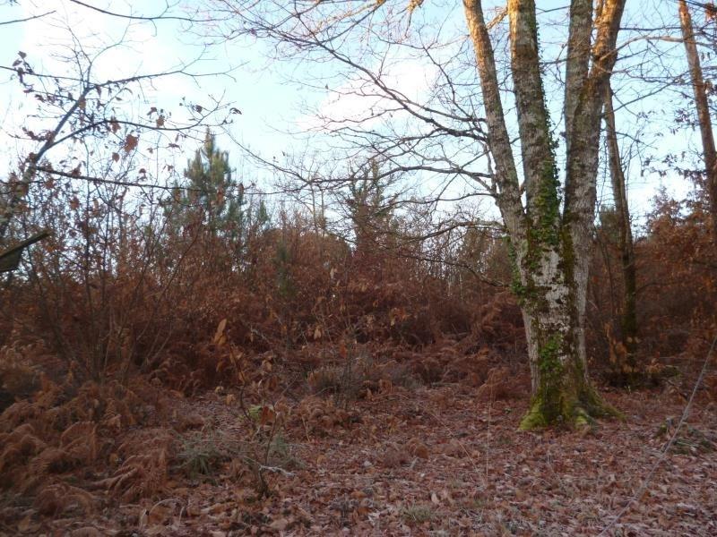 Vente terrain Notre dame de sanilhac 54500€ - Photo 1