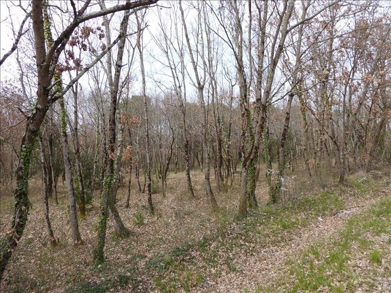 Vente terrain Montauban-est 71000€ - Photo 3