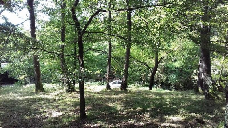 Vente terrain Tarbes 54000€ - Photo 3
