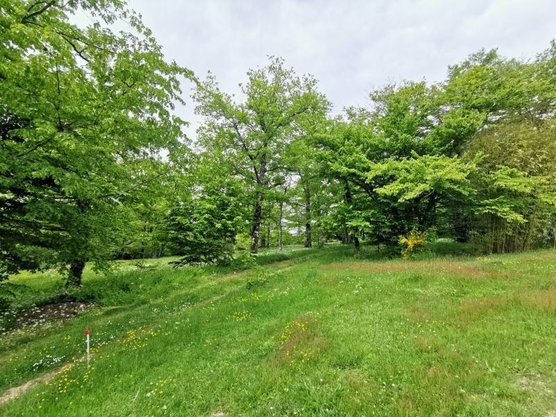 Vente maison / villa St maurice les brousses 226825€ - Photo 4