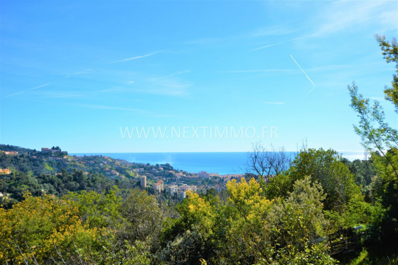 Vente terrain Menton 299000€ - Photo 1