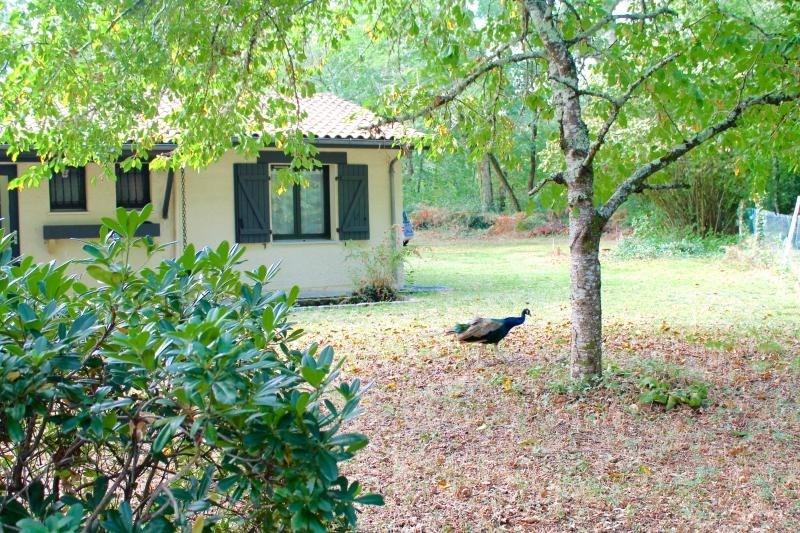 Vente maison / villa Saucats 388500€ - Photo 3