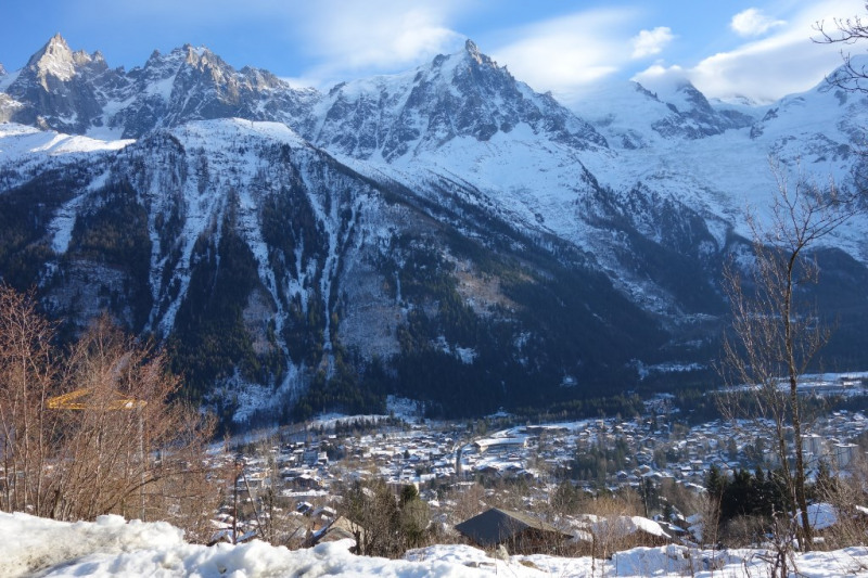 Vente terrain Chamonix mont blanc 3058000€ - Photo 1