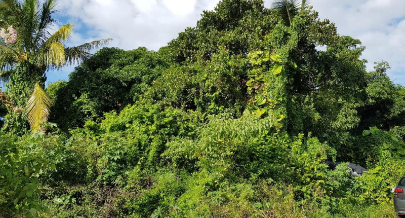 Vente terrain Saint andre 140000€ - Photo 2