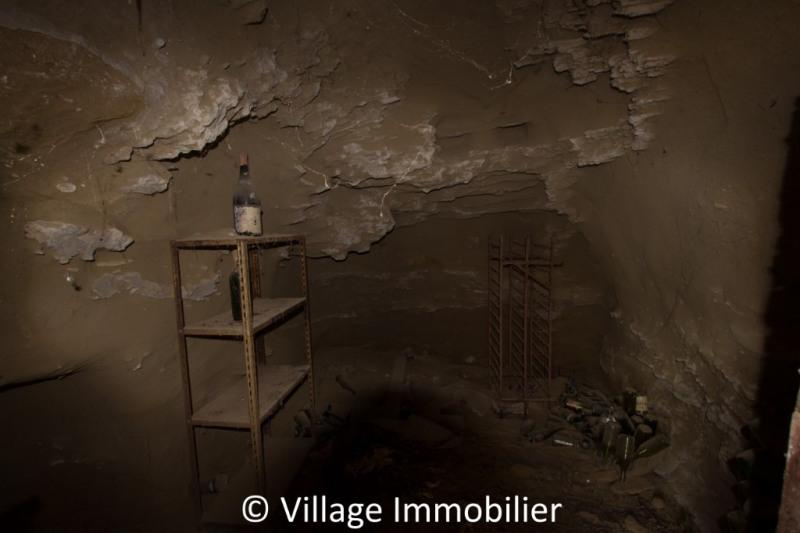 Vente de prestige maison / villa Toussieu 620000€ - Photo 13