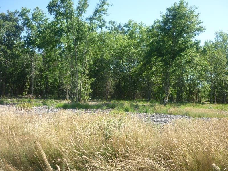 Vente terrain Saugnac et muret 85000€ - Photo 3