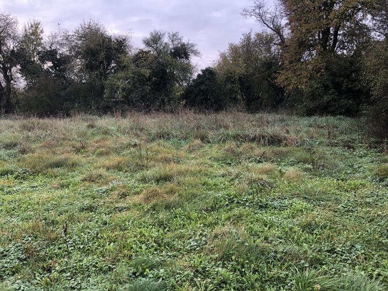 Vente terrain Boult 68000€ - Photo 3