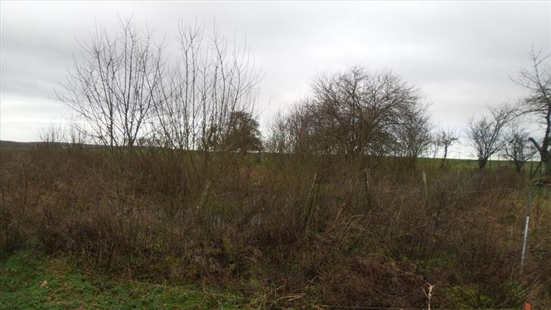 Sale site Chezy sur marne 35 000€ - Picture 1