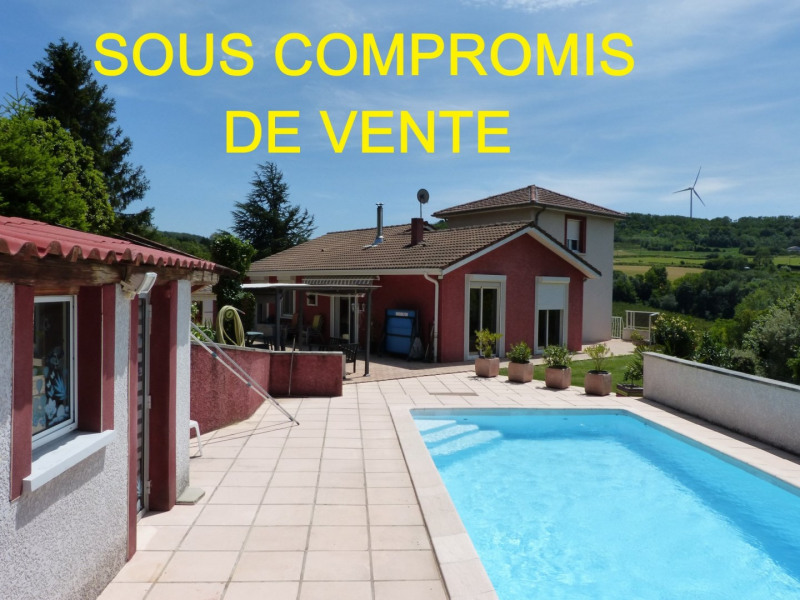 Vente maison / villa Beausemblant 350 000€ - Photo 1