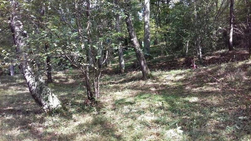 Vente terrain Tarbes 54000€ - Photo 4