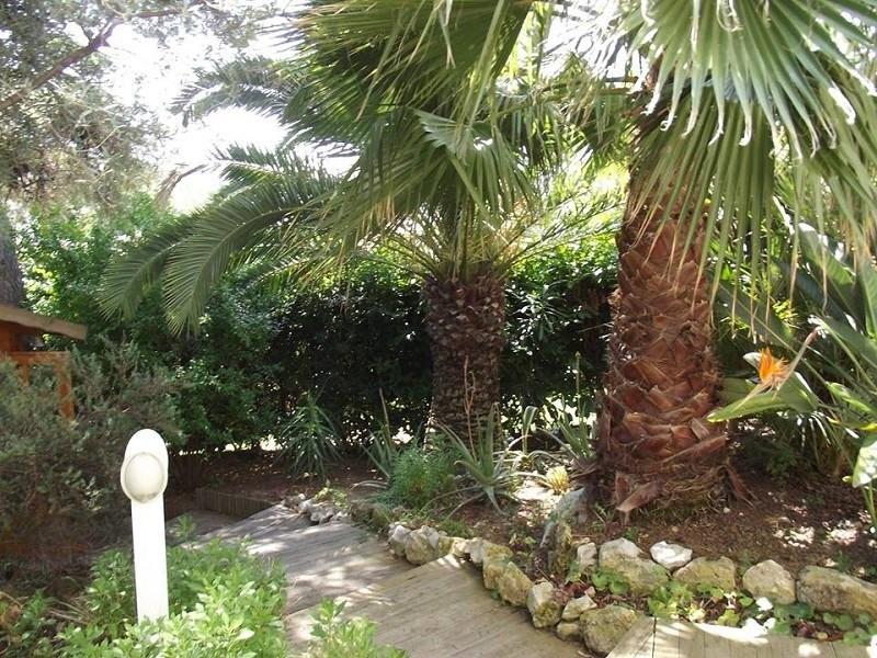 Vente appartement Juan les pins 395 000€ - Photo 4
