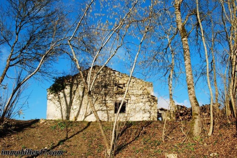 Sale house / villa Colayrac st cirq 245000€ - Picture 9