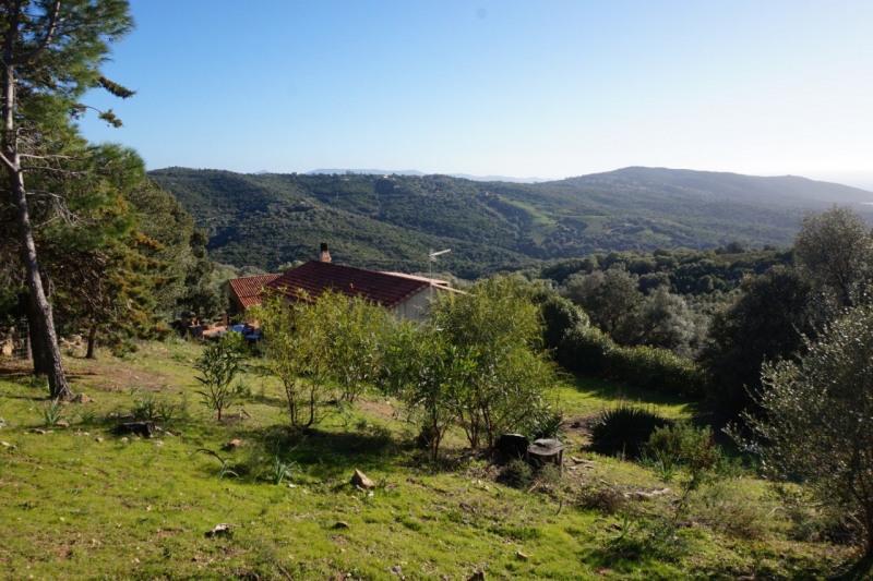Vente maison / villa Serra-di-ferro 480000€ - Photo 14