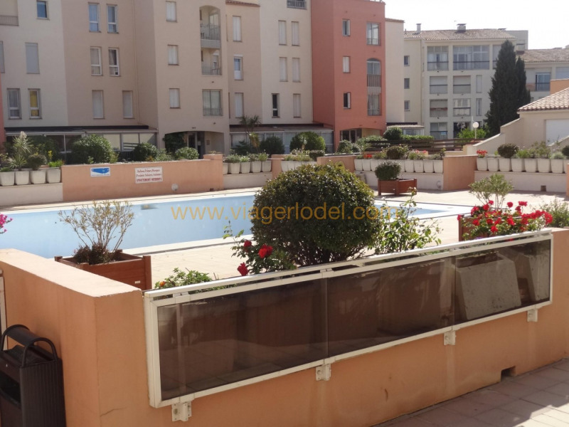 Viager appartement Agde 38 000€ - Photo 10