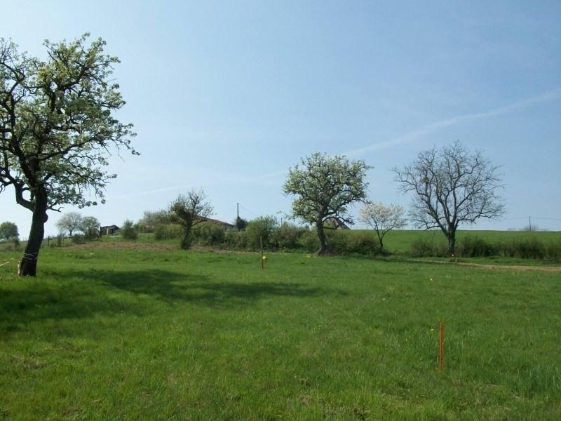 Vente terrain St cyr de favieres 58300€ - Photo 1