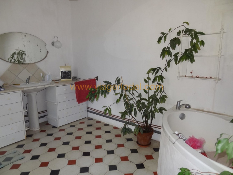 Vitalicio  casa Saint-ambroix 240000€ - Fotografía 22