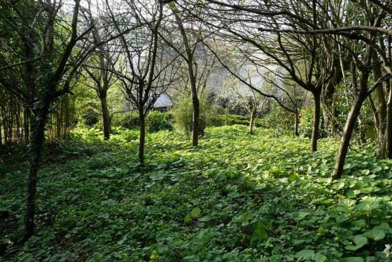 Vente terrain Coutances 53000€ - Photo 1