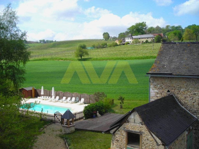 Immobile residenziali di prestigio casa Monein 850000€ - Fotografia 3