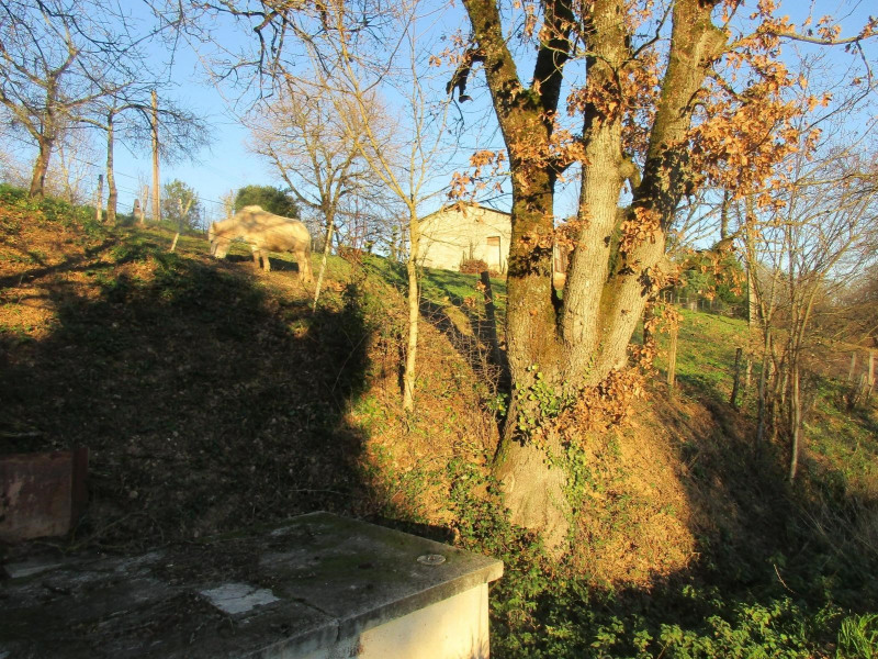 Sale site Albi 38 000€ - Picture 10