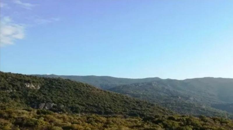 Vente terrain Pietrosella 155000€ - Photo 11