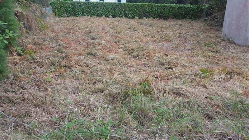 Vendita terreno Fouesnant 51000€ - Fotografia 3