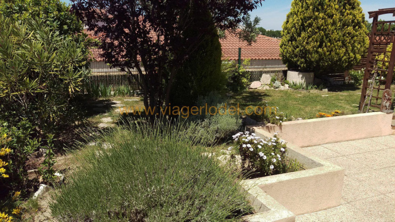 Viager appartement Montpellier 150000€ - Photo 6