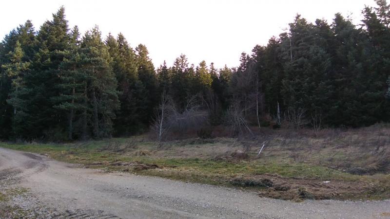 Vente terrain Le chambon sur lignon 29500€ - Photo 3